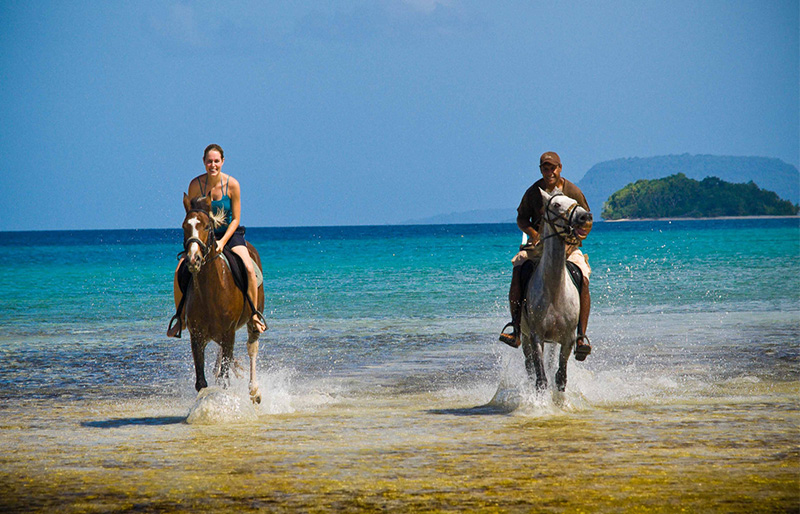 Private horse riding at Vanuatu island
